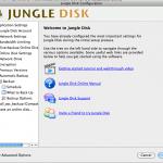 Jungledisk konfigurieren